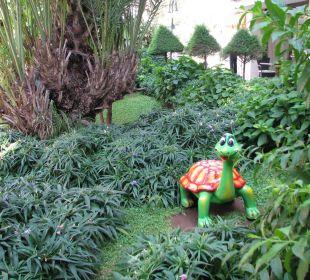 """Turtle"" in the garden Hotel Aqua"