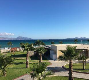 Hotel Hotel Horizon Beach Resort