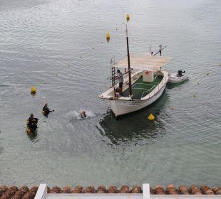 Die Taucher sind zurück!   Hotel Poseidon Bahia