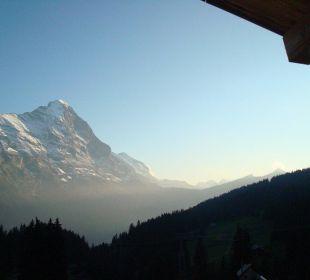 Ausblick zum Eiger Hotel Berghaus Bort