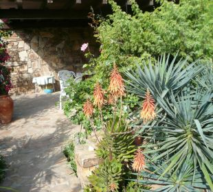 Terrasse Sardafit Ferienhaus Budoni