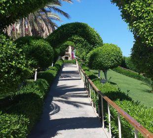 Vom Ruhepool hinauf zum Activitypool TUI MAGIC LIFE Kalawy