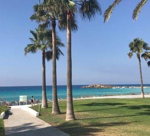Gartenanlage Hotel Nissi Beach Resort