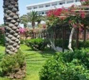 Blick von der Poolbar Hotel Nissi Beach Resort