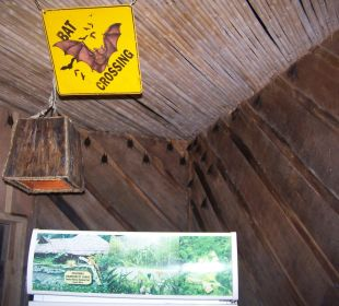 Bewohner des Hauptgebäudes Esquinas Rainforest Lodge