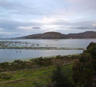 Blick auf den Titicacasee Hotel Libertador Lago Titicaca