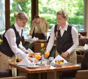 Frühstück Wintergarten Schlosshotel Monrepos
