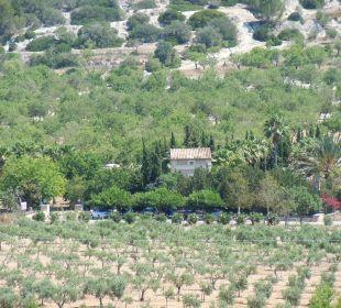Die Location um die Seele baumeln zu lassen Agroturismo S'Hort de Son Caulelles