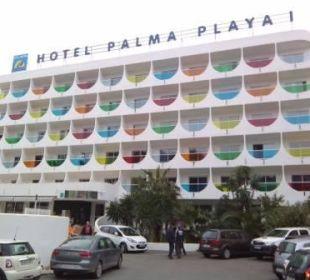 Bunt Hotel Palma Playa - Cactus