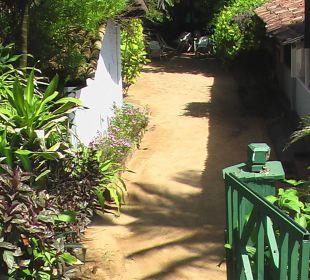 Teil des Gartens Hotel Susantha Garden