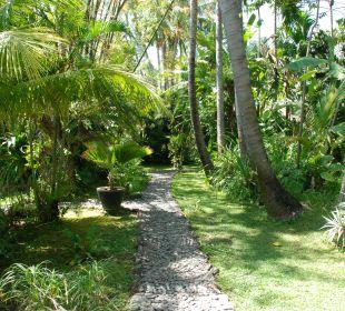 Weg vom Frühstückspavillion zur Villa Ciliks Beach Garden