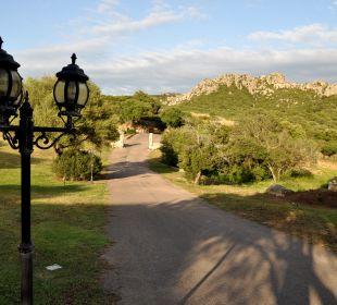 Zufahrt zum Hotel Hotel Parco Degli Ulivi