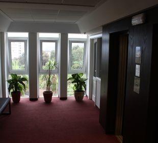 Lobby Hotel Tigaiga