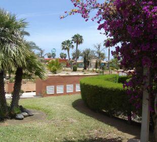 Rasenfläch vor unserer Suite Dunas Suites&Villas Resort