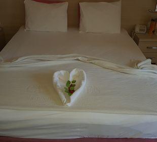 Zimmer Hotel Can Garden Resort