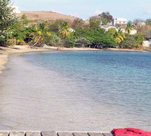 Beach Hotel The Calabash