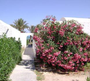 Sidi slim Hotel Sidi Slim