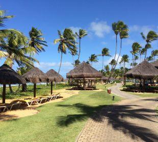 Weg am Strand vorbei IBEROSTAR Hotel Bahia