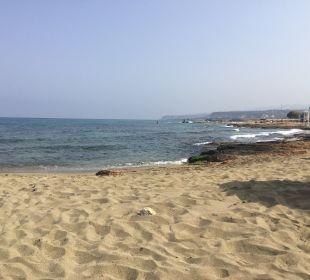 Hotelbilder Hotel Cretan Malia Park Malia Holidaycheck