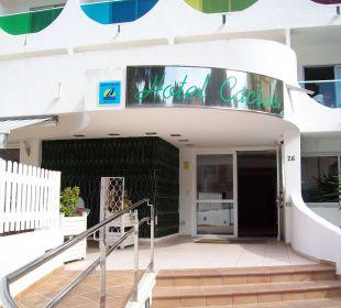 Eingang Hotel Palma Playa - Cactus