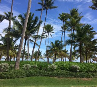 Blick vom Buffetrestaurant Secrets Royal Beach Punta Cana