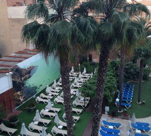 Liegen beim Pool vom Balkon aus betrachtet Hotel Anabel