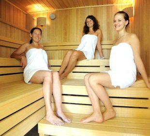 Sauna Hotel Karnia