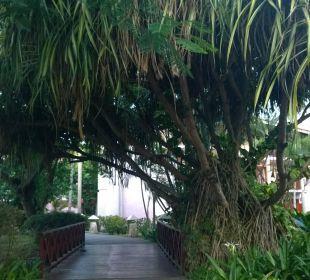 Weg zum Strand Hotel Natura Park Resort & Spa