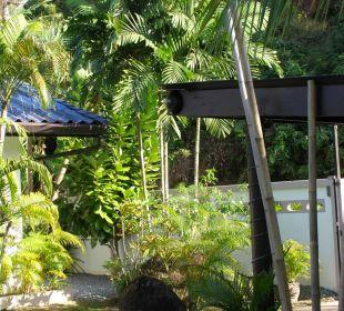 Palmen Phuket Lotus Lodge