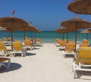 Vue plage Hotel Safira Palms
