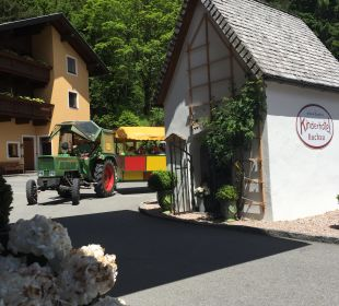 Traktorfahrt Rieser's Kinderhotel Buchau