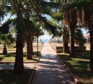 Weg zum Strand wow Hotel Royal Garden Select