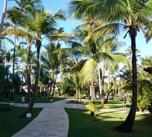 Garten Now Larimar Punta Cana