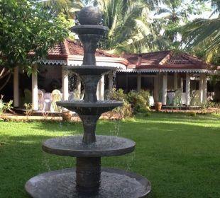 Blick auf das Restaurant Bougain Villa