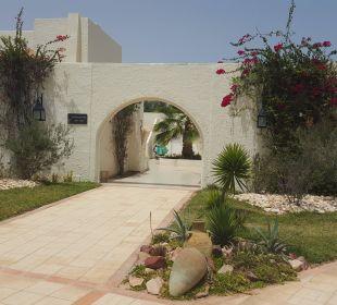 Eindrücke aus unserem Urlaub im Juli 2016 in Djerba TUI MAGIC LIFE Penelope Beach