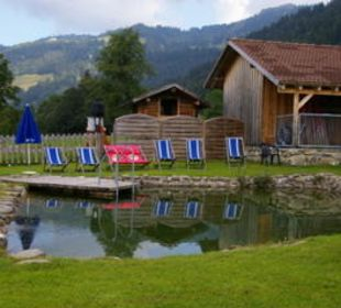 Badeteich schön und sauber Gasthof Schwabenhof
