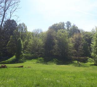 Gartenanlage Schlosshotel Ralswiek