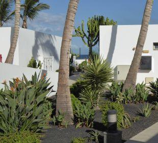 Blick aus dem Zimmer Hotel Las Costas