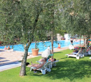 Pool Hotel Caravel