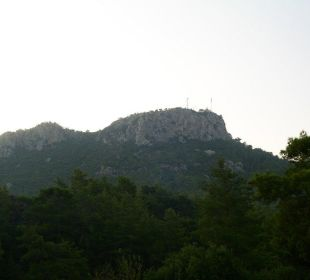 Ausblick vom Balkon Hotel Forest Park