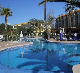 Pool mit Palmenschatten Hotel Viva Tropic