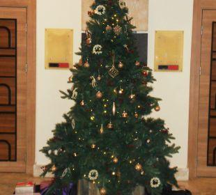 Weihnachtsbaum Hotel Titan Select