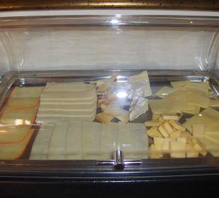 Frühstücksbuffet Käseauswahl Agroturismo S'Hort de Son Caulelles
