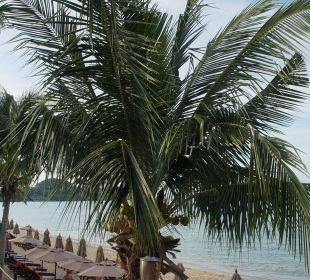 Hotelliegen  Anantara Bophut Koh Samui Resort