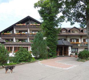 Eingang zum Hotel Waldblick Hotel Kniebis