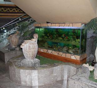 Aquarium  Hotel Royal Dragon