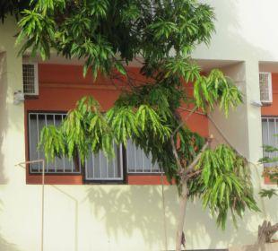 Vergitterte Fenster trotzdem sind wir ausgeraubt w Hotel Pousada da Luz