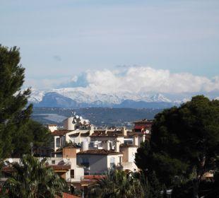 Auf das Schneebedeckte Tramuntana-Gebirge Hotel Palma Playa - Cactus