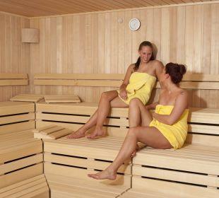 Subtropisches Badeparadies Apartments Ferienpark Weissenhäuser Strand
