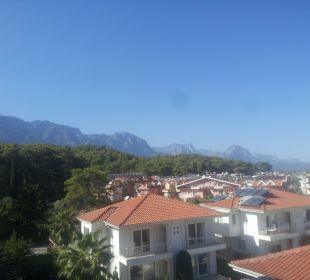 Blick vom Balkon Hotel Forest Park